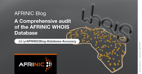 A Comprehensive audit of the AFRINIC WHOIS Database